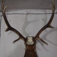 Деревянные резные подставки-медальона под рога